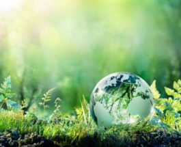 ООН,природа,биоразнообразие