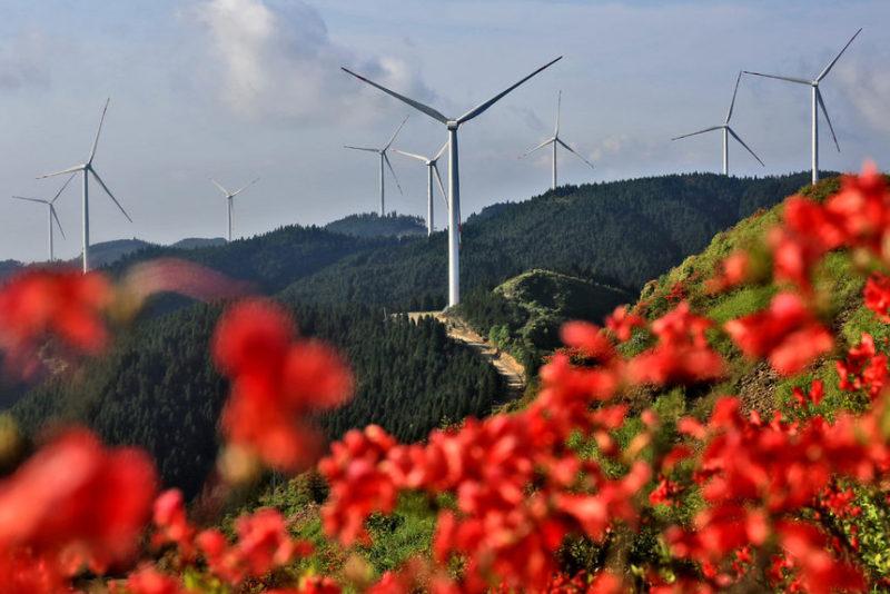 Ветровые турбины в Китае.