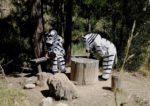 Двое зебр