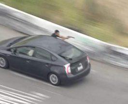 Пассажир в Приусе