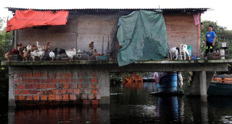После проливных дождей в Парагвае.