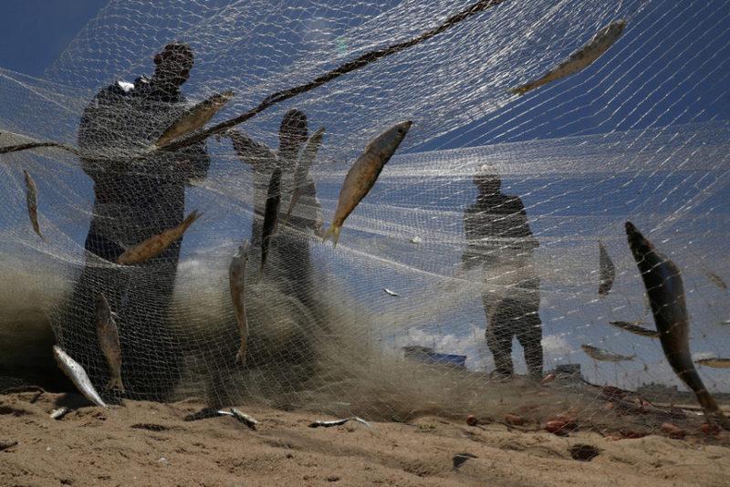Рыбаки чистят свои сети