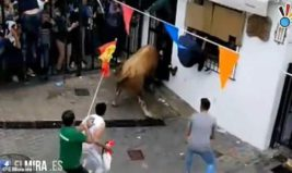 бык убил человека