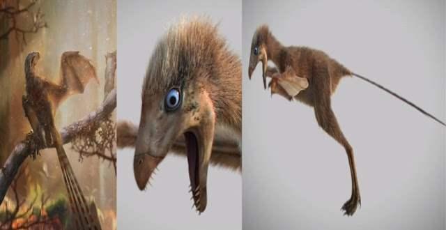 китай динозавр