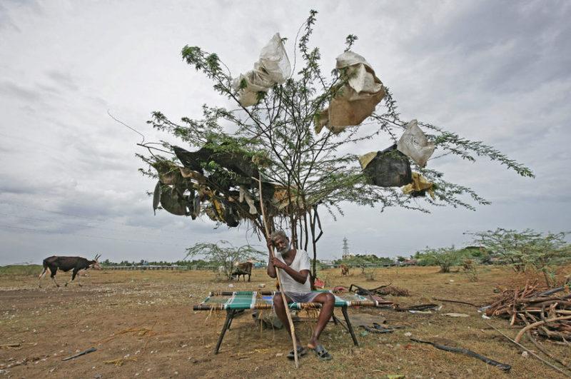 Пастух отдыхает под деревом