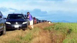 машины в поле