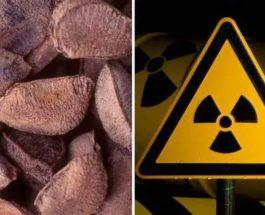 орехи радиация