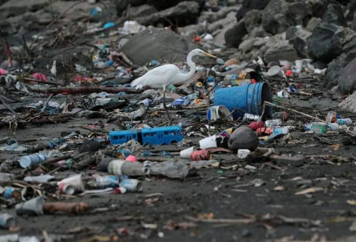 Куча пластиковых отходов