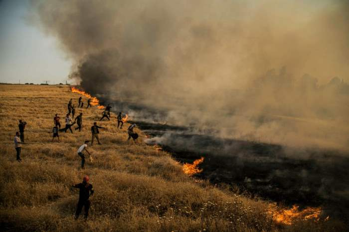 Люди тушат пожар