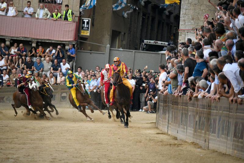 Момент конного соревнования