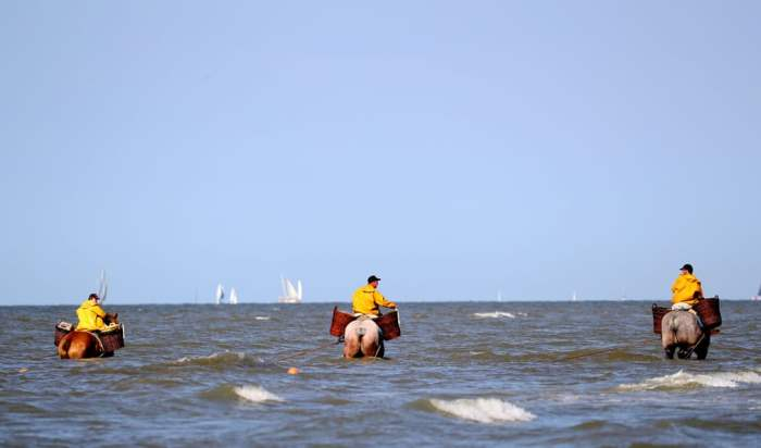 Рыбаки катаются на лошадях в море.