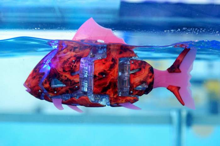 Рыба-робот