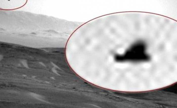 марс птица