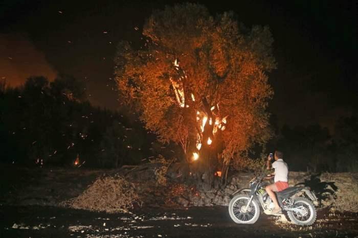 пожар, вспыхнувший в лесу