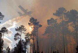 португалия пожары
