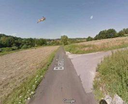 Google Street View сбила зайца