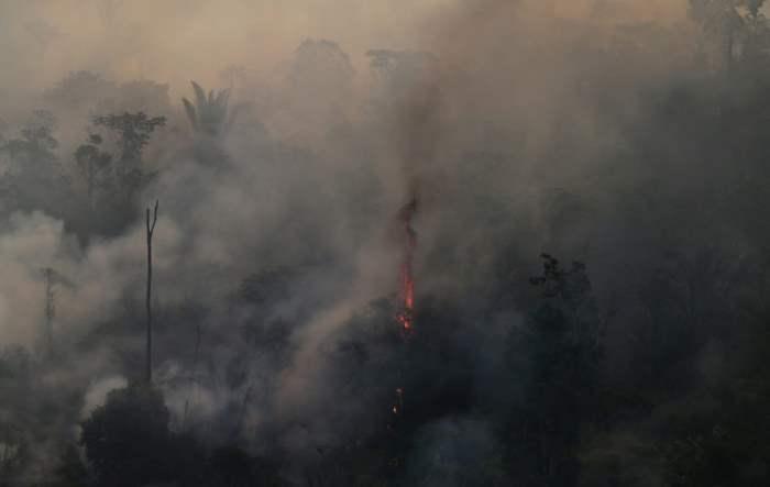 Пожар в джунглях Амазонки