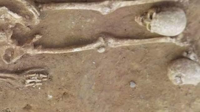 вытянутые черепа в Хорватии