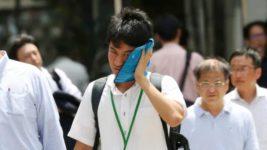 жара в японии