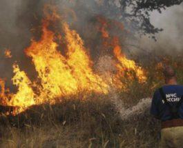 пожары сибирь