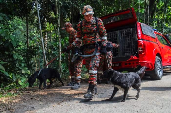 Сотрудники пожарно-спасательного отряда
