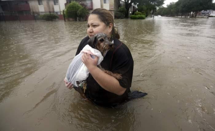 Житель несет свою собаку через паводковые воды.