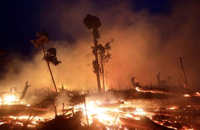 Огонь уничтожает район джунглей