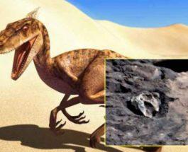 рептилия на марсе