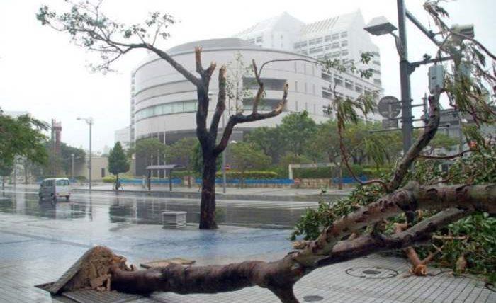 тайфун факсай