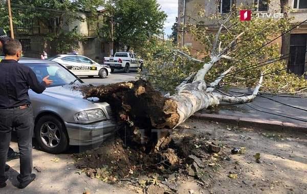 ураган тбилиси