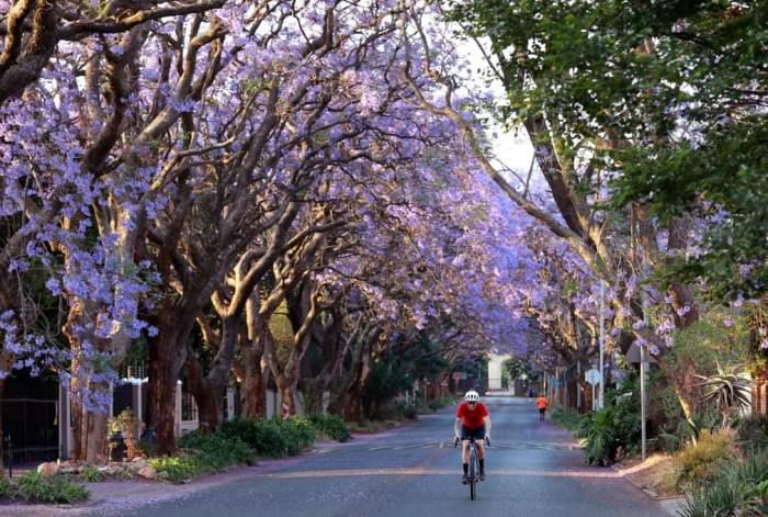 Йоханнесбург, Южная Африка