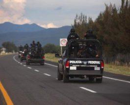 мексика картель синалоа