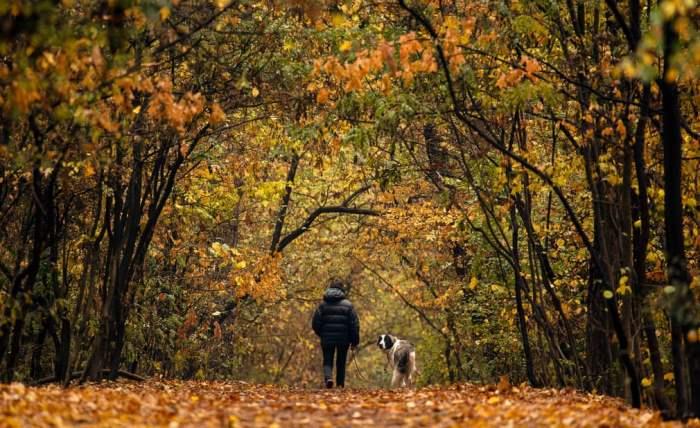 Женщина гуляет со своей собакой