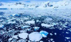Изменение климата: к 2044 году арктический лед может исчезнуть, и эксперты утверждают, что виноваты люди