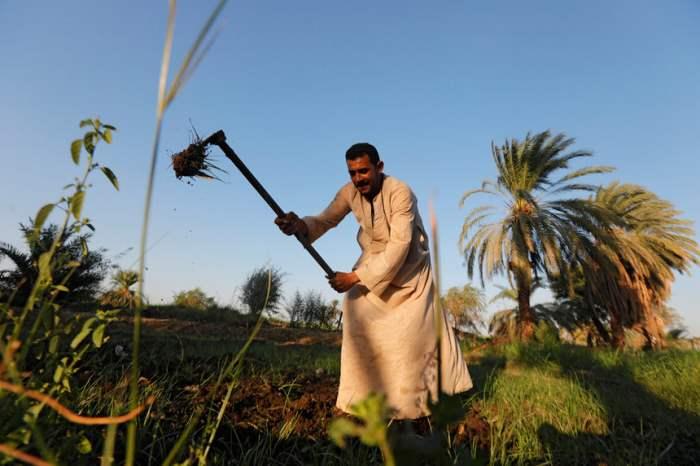 Фермер обрабатывает землю