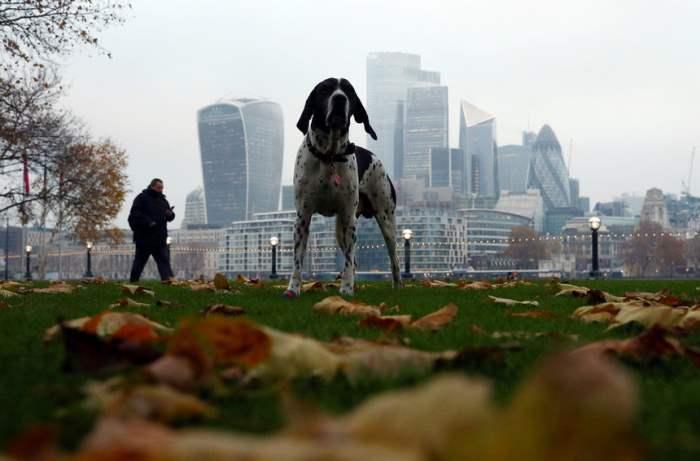 Финансовый район в Лондоне
