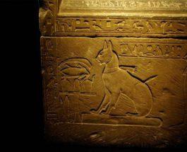 египет кошка