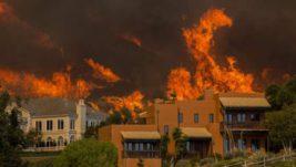 калифорния лесные пожары