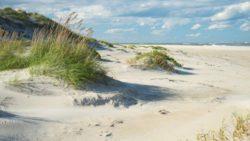 В Северной Каролине прибрежные районы засыпало песком