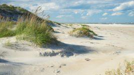 песок северная каролина