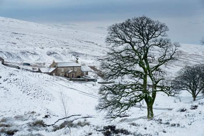Первый снег английской зимы
