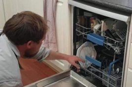 змея в посудомоечной машине
