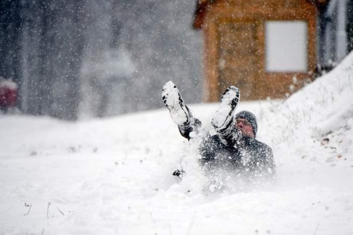 наслаждается свежим снегом