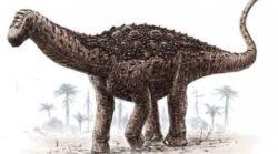 Ученые Эквадора обнаружили новый вид динозавров