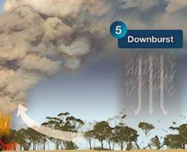 австралия погода