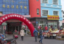 Китайские ученые обнаружили источник вируса-убийцы