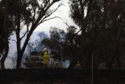 Пожары в Австралии подняли мировой уровень углекислого газа
