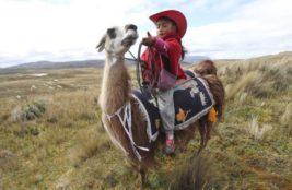Девочка и ее лама