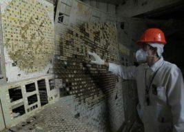Любящие радиацию грибы