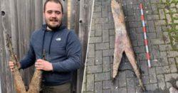 Мужчина нашел огромную кость таинственного существа